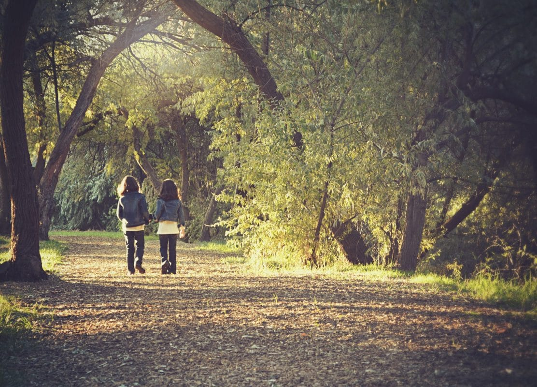 Promenade En Forêt Période Sensible Montessori