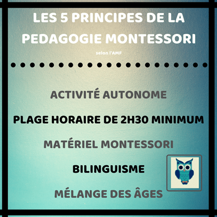 Les 5 principes de la pédagogie montessori AMF