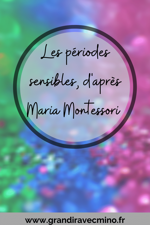 Affiche Les Périodes Sensibles selon Maria Montessori