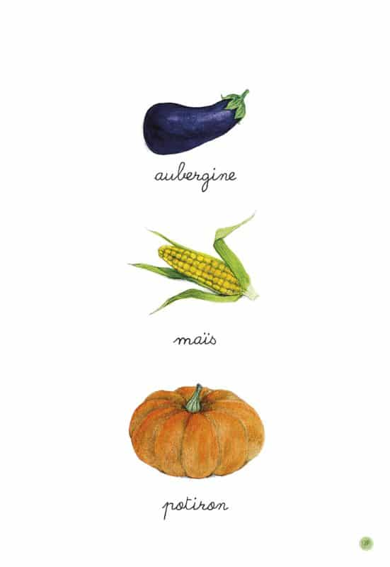 imagier montessori de balthazar légumes